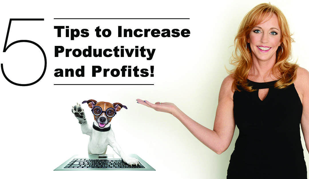 5 Tips to Increase Productivity and Profits!